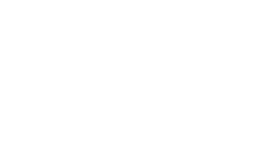 Zelly Store